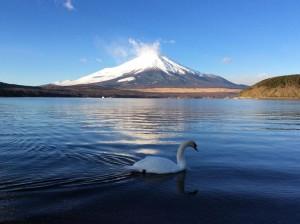 富士山正月